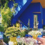 bleu outremer peinture naturelle