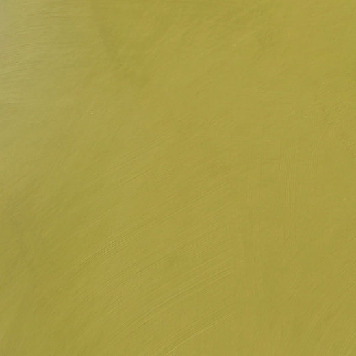 peinture chaux vert kiwi